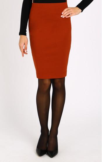 Права пола в цвят Red Ochre